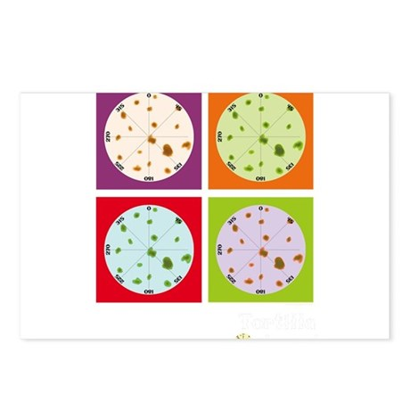 TOrigami multi-colors Postcards (Package of 8)
