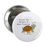 Marry a Box Turtle Cornyn 2.25