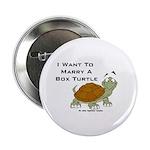 Marry a Box Turtle Cornyn Button