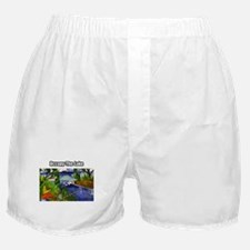 Occupy The Lake Boxer Shorts