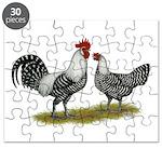 Brakel Chickens Puzzle