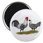 Brakel Chickens Magnet