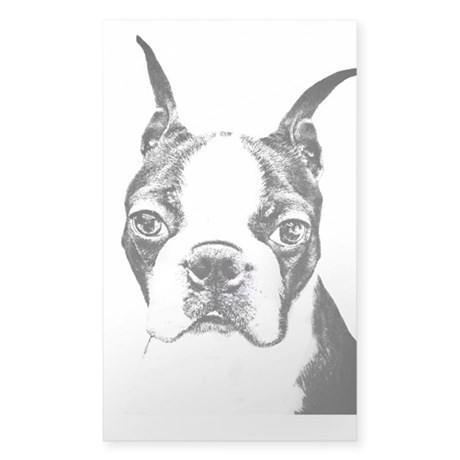 BOSTON TERRIER - DOG Sticker (Rectangle)