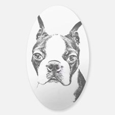 BOSTON TERRIER - DOG Decal