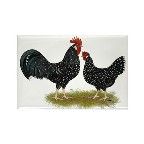 Ancona Chickens Rectangle Magnet