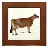 Jersey cow Framed Tiles