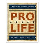 Pro Life Small Poster
