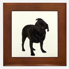 Pugs1 Framed Tile