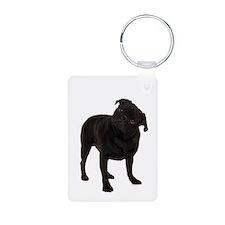 Pugs1 Keychains