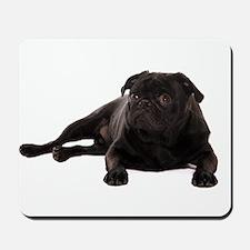 Pug 2 Mousepad