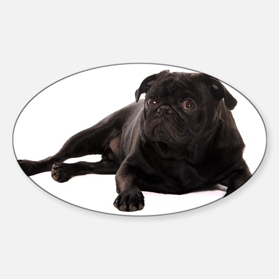Pug 2 Sticker (Oval)