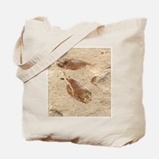 Fish Fossil Tote Bag
