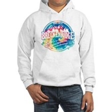 Breck Old Circle Perfect Hoodie