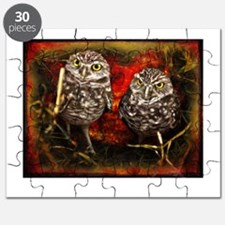 Burrowing Owls Puzzle
