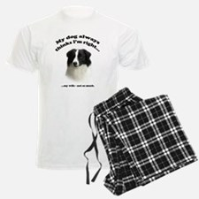 Border Collie v Wife Pajamas