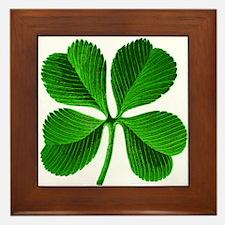 Lucky Charm 4-Leaf Clover Irish Framed Tile