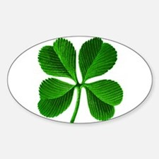 Lucky Charm 4-Leaf Clover Irish Decal