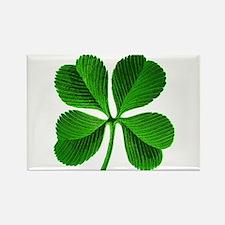 Lucky Charm 4-Leaf Clover Irish Rectangle Magnet