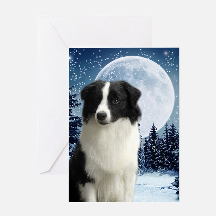 2010 Border Collie Card