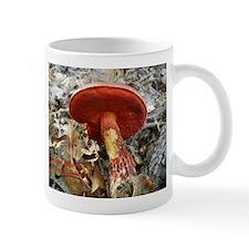 Boletus frostii Mug
