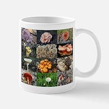 Twelve mushrooms Mug