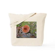 Coltricia perennis Tote Bag