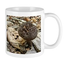 The Old Man Of The Woods Mug