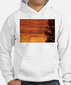 Funny Orange colored Hoodie