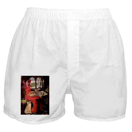 Lady/MCoon+OrTabby Boxer Shorts