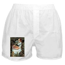 Ophelia / Maine Coon cat #11 Boxer Shorts