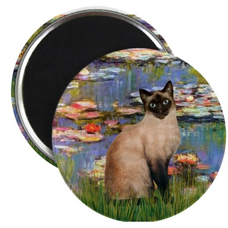 Lilies (2) & Siamese Magnet