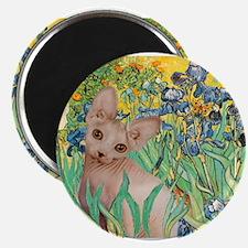 Irises / Sphynx Magnet