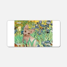 Irises / Sphynx Aluminum License Plate