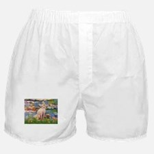 Sphynx cat and lilies. Boxer Shorts