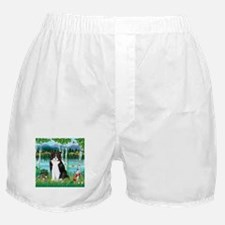 Birches / (B&W) Cat Boxer Shorts