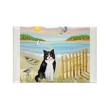 Rowboat / (B&W) Cat Rectangle Magnet