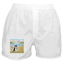 Rowboat / (B&W) Cat Boxer Shorts