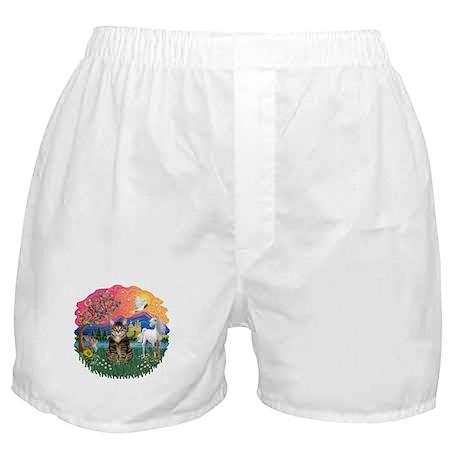 Fantasy Land/Tabby Tiger Cat Boxer Shorts