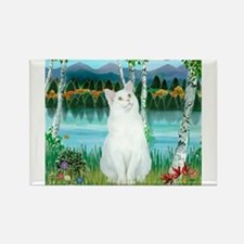 Birches / (White) Cat Rectangle Magnet