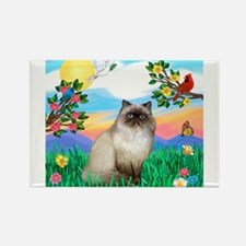 Bright Life / Himalayan Cat Rectangle Magnet