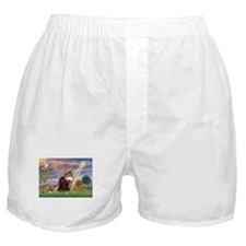 Cloud Angel & Maine Coon Boxer Shorts