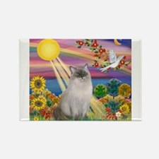Autumn Sun / Ragdoll Rectangle Magnet