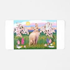 Spring Blossoms & Sphynx Cat Aluminum License