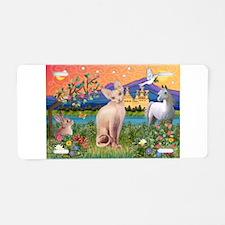 Fantasy Land Sphynx Cat Aluminum License Plate