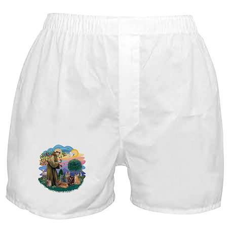St Francis / 4 Cats Boxer Shorts