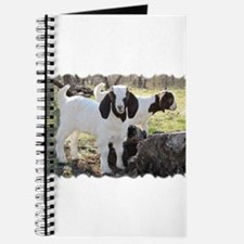 Texas country photos. Texas W Journal