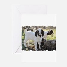 Texas country photos. Texas W Greeting Cards (Pk o