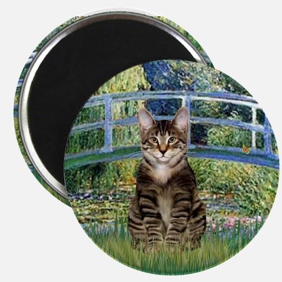 Bridge / Brown tabby cat Magnet
