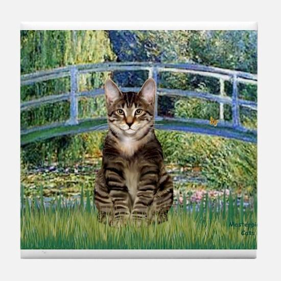 Bridge / Brown tabby cat Tile Coaster