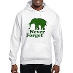 Never forget Hooded Sweatshirt